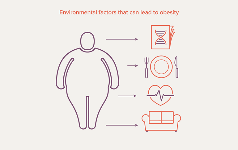 Factors that can lead to obesity, including genetics, diet, medical problems, and activity level